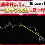 ドラゴンストラテジーFX 特典「利益率NO.1のゴールデン矢印の見つけ方」
